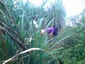 Indian college couple caught fucking in sugarcane fields lol