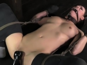 Cat play submissive punished roughly