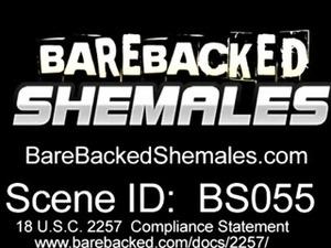 Sexy Shemale With Hard Dick Bareback
