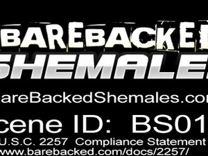Shemale Have A Nice Bareback With Handsome