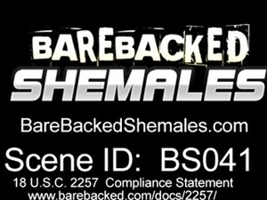 Shemale Good In Sucking And Bareback