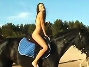 Naked Girl Riding A Horse At The Beach