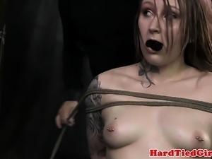 Kinky tattooed Mollie Rose tied up