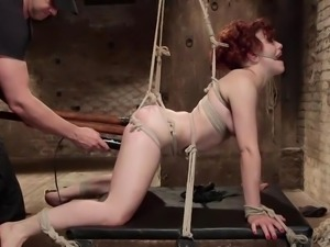 hogtied bitch has her holes stuffed