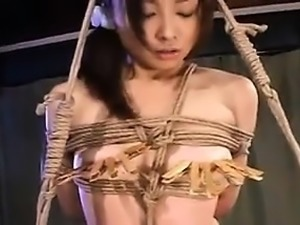 Helpless Asian babe gets tied up, suspended and fucked with