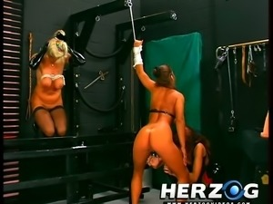 Pussy lips of tied up blondie gets pinned with pegs and boobs are tied up hard